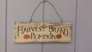 Harvest Brand Pumpkin Fall Home Decor