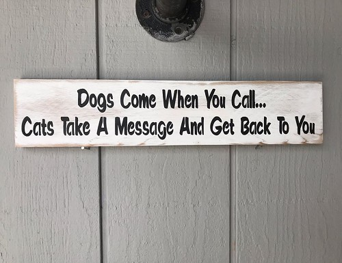 Dogs Come when you Call Cats Text You Wall Art Decor